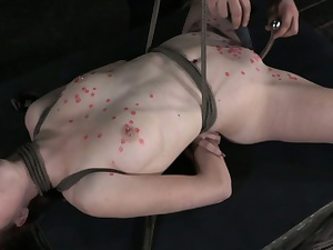 Wax played hogtied perforated sub pleased